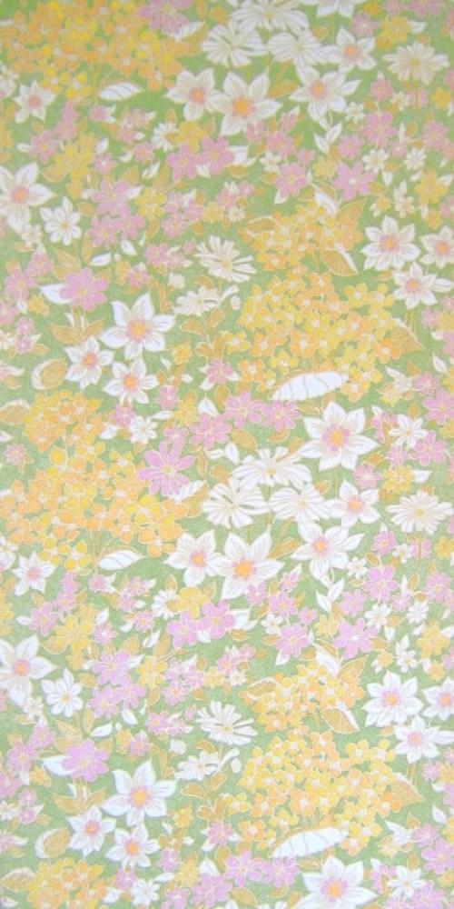 Bild 1 von Tapete Frühlingswiese