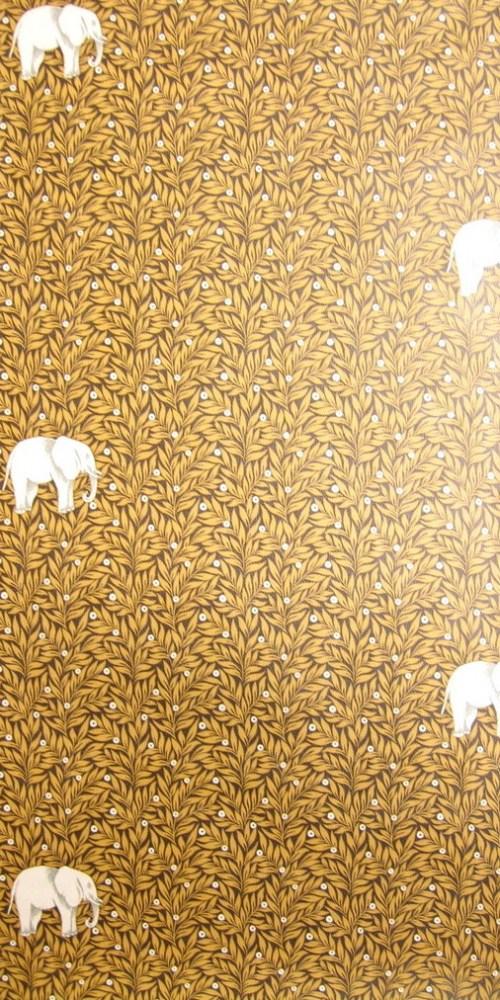 Bild 1 von Tapete Observed Elefant