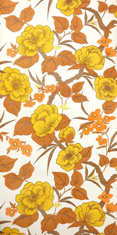 Bild 1 von Tapete Orangedream