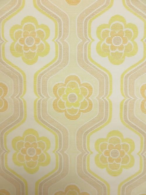 Bild 3 von Tapete Popcornblüme
