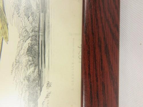 Bild 2 von 1876 Französische Radierung Kaulbarsch