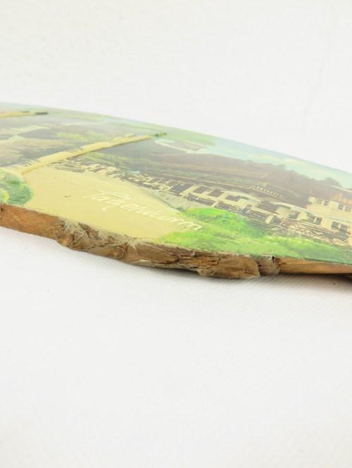Bild 7 von 60er Holzbild 100 Jahre Tatzelwurm, Bayern