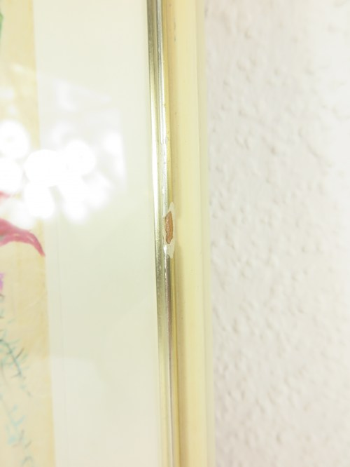 Bild 7 von 50er Bild Fuchsie auf echtem Seidenpapier